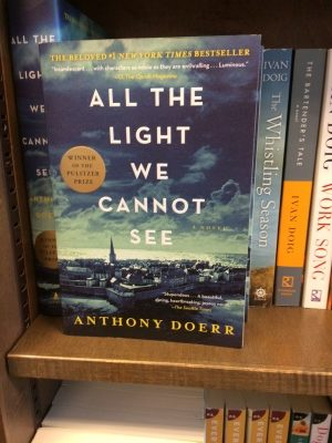 Book review of all the light you cannot see