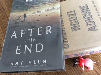 After the End Book Review