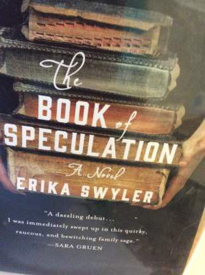 The Book of Speculation Book Review