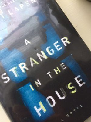 A Stranger In The House A Novel